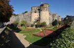 Angers, Hanc